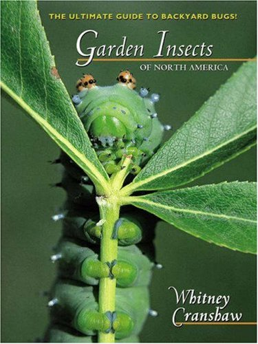 Garden Insects of North America: The Ultimate Guide to Backyard Bugs 9780691095615