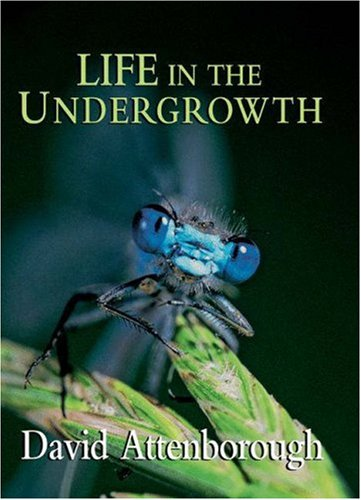 Life in the Undergrowth 9780691127033