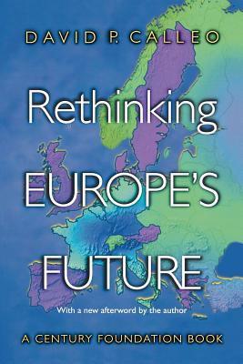 Rethinking Europe's Future 9780691113678