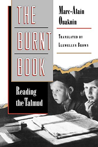 The Burnt Book: Reading the Talmud 9780691059204