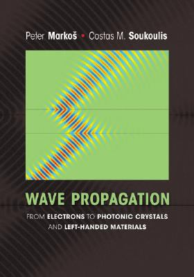 Wave Propagation: From Electrons to Photonic Crystals and Left-Handed Materials 9780691130033