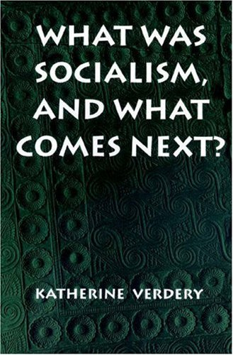 What Was Socialism, and What Comes Next? 9780691011325