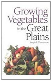 Growing Vegetables 2564319
