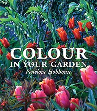 Color in Your Garden 9780711220584