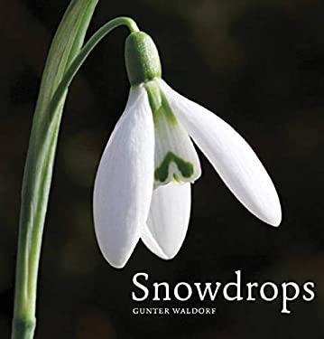Snowdrops 9780711233850