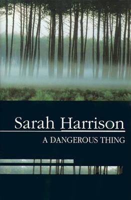A Dangerous Thing 9780727872128
