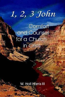 1, 2, 3 John - Comfort and Counsel for a Church in Crisis 9780737500165