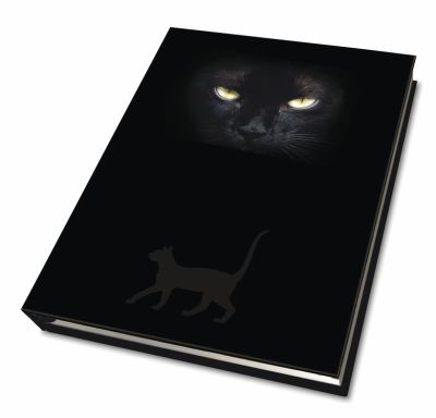Cat's Eyes Journal 9780738729503