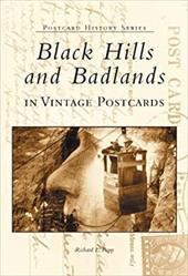 Black Hills and Badlands in Vintage Postcards 2691307