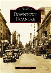 Downtown Roanoke 2690986