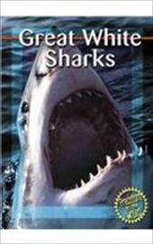 Great White Sharks 2675836