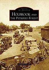 Holbrook and the Petrified Forest 2693665