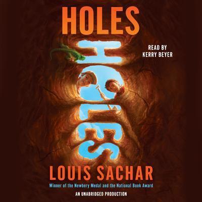 Holes 9780739331767