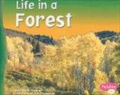 Life in a Forest 2676672