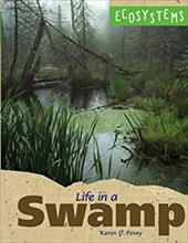 Life in a Swamp 2685732