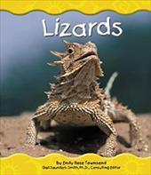 Lizards 2676651