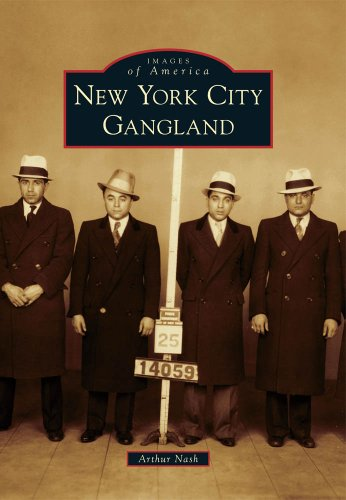 New York City Gangland 9780738573144
