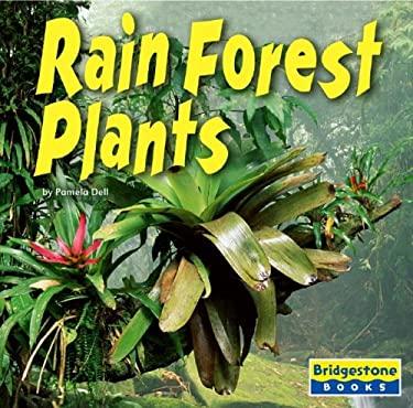 Rain Forest Plants 9780736843249