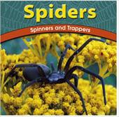 Spiders: Spinners and Trappers 2675879