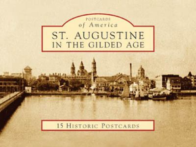 St. Augustine in the Gilded Age 9780738525334