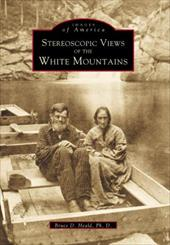 Stereoscopic View of the White Mountains 2689906