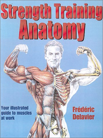 Strength Training Anatomy 9780736041850