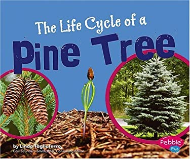 The Life Cycle of a Pine Tree 9780736867122