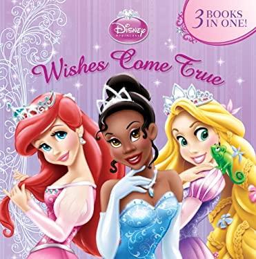Wishes Come True 9780736427234