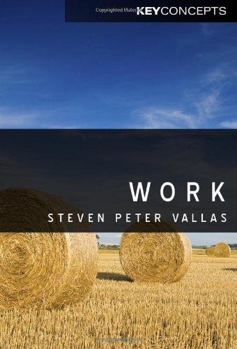 Work: A Critique 9780745646794
