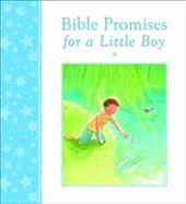 Bible Promises for a Little Boy 21218236