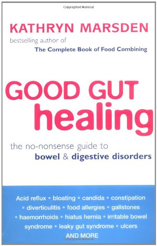 Good Gut Healing: The No-Nonsense Guide to Bowel & Digestive Disorders 9780749924485