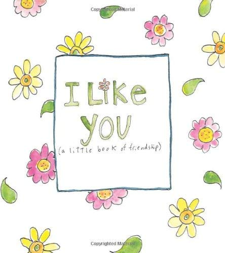 I Like You: (A Little Book of Friendship) 9780740773754