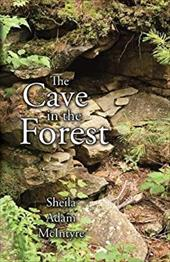 The Cave in the Forest 22167731