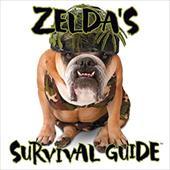 Zelda's Survival Guide 2726295