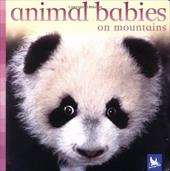 Animal Babies on Mountains 2811909
