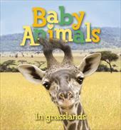 Baby Animals in Grasslands 8671300