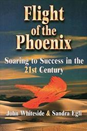 Flight of the Phoenix 2798577