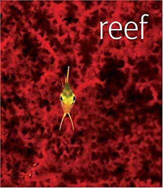 Reef 9780756655754