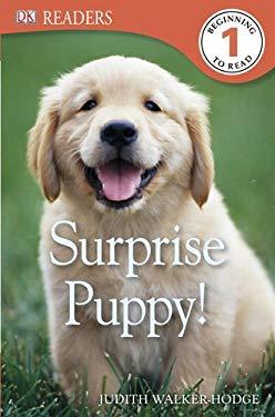 Surprise Puppy! 9780756692940