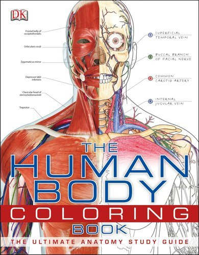 The Human Body Coloring Book 9780756682347