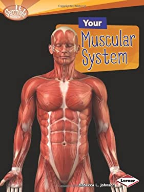 Your Muscular System (Searchlight Books: How Does Your Body Work?) 9780761374497
