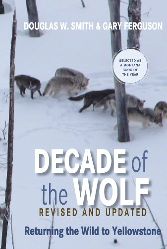 Decade of the Wolf: Returning the Wild to Yellowstone 9780762779055
