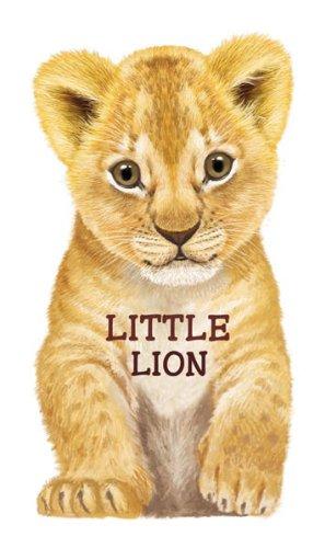 Little Lion 9780764165252