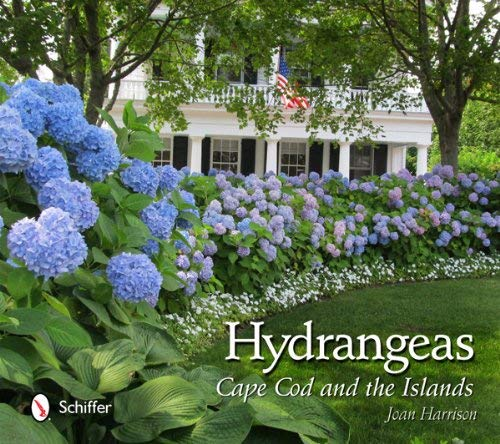 Hydrangeas: Cape Cod and the Islands 9780764340550