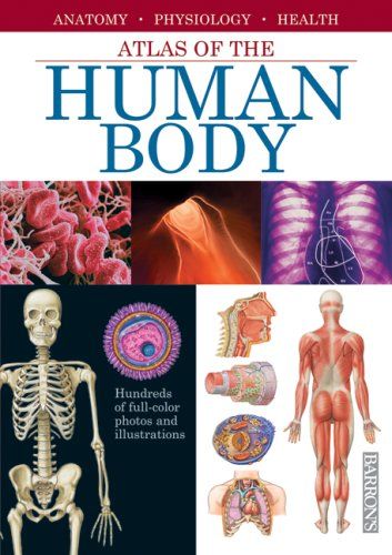Atlas of the Human Body: Anatomy, Physiology, Health 9780764160912