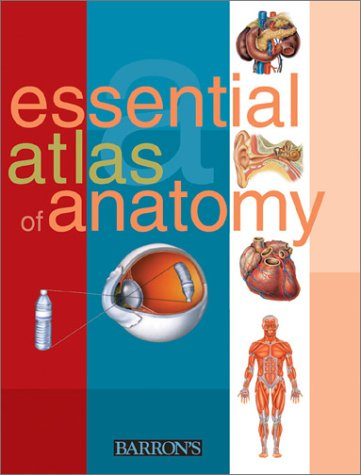 Essential Atlas of Anatomy 9780764118333