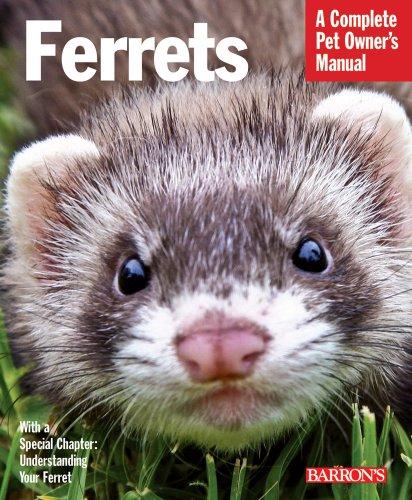 Ferrets 9780764143328