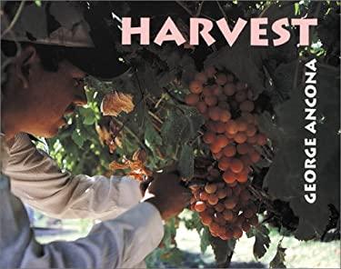 Harvest 9780761450863