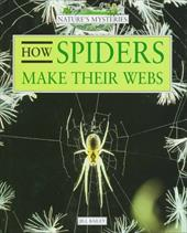 How Spiders Make Their Webs 2887440