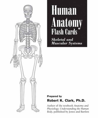 Human Anatomy Flash Cards: Skeletal and Muscular Systems 9780763735159